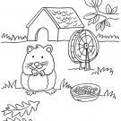 Conejo de india y su casa: dibujo para colorear e imprimir