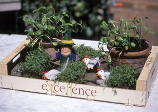 Fabricar un jardín de primavera. Manualidad infantil para regalos
