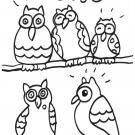 Cinco búhos: dibujo para colorear e imprimir