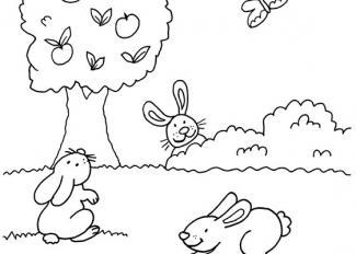 Conejos y mariposa: dibujos para colorear e imprimir