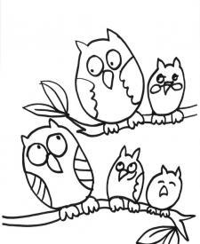Familia de búhos: dibujo para colorear e imprimir