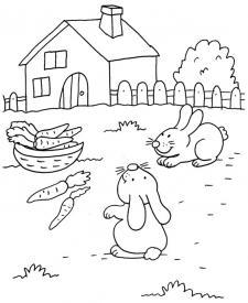 Conejos buscando zanahorias: dibujo para colorear e imprimir