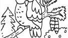 Búho y erizo: dibujo para colorear e imprimir