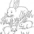 Mamá conejo y sus conejitos: dibujo para colorear e imprimir
