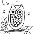 Búho bajo la luna: dibujo para colorear e imprimir