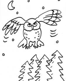 Un búho volando: dibujo para colorear e imprimir