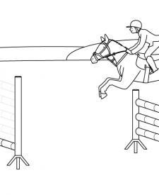 Salto de caballo: dibujo para colorear e imprimir