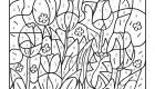 Colour by numbers: tulipanes en el campo