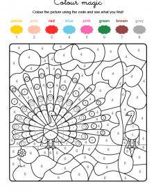 Colour by numbers: un pavo real