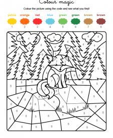 Colour by numbers: un zorro en el campo