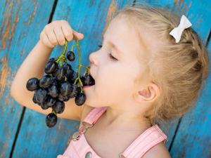 nuevos sabores para el niño