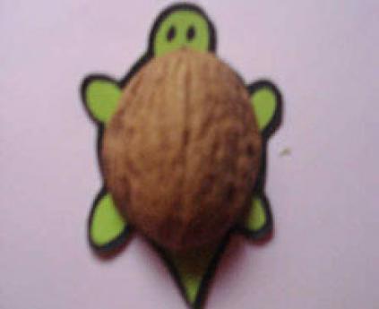 Tortuga de cáscara de nuez. Manualidad sencilla para los niños