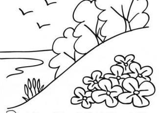 Actividades Para Niños Dibujos Manualidades Cuentos Adivinanzas