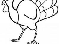 Dibujos De Aves En Conmishijoscom