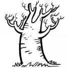 Dibujos para colorear con los niños de un árbol sin hojas en otoño