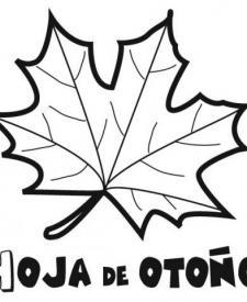Dibujo de una hoja de otoño. Imágenes de naturaleza para colorear