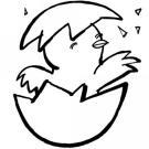 Dibujo infantil de un pollito para imprimir y pintar