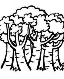 Dibujos de árboles en primavera para colorear con los niños