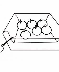 Caja de tomates