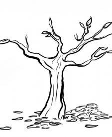 Árbol y hojas