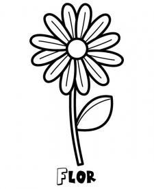 Dibujo de una margarita. Imágenes de flores para pintar