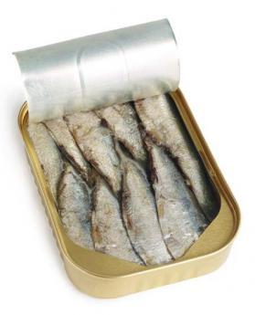 Canapés de sardinas