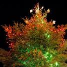 Tarjeta virtual de las luces de Navidad para enviar online