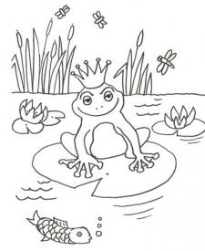 Dibujo de una rana encantada para colorear con niños