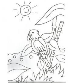 Dibujo de una cacatúa en la selva para colorear con niños