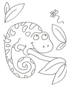 Dibujo para pintar con niños de un camaleón