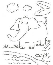 Dibujo de un elefante en la selva para colorear con niños