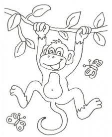Dibujo de mono y mariposas para pintar con niños