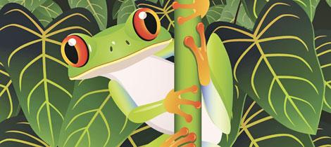 El sapo verde Poesa de Carmen Gil para nios