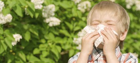 Homeopat 237 A Y Alergias En Ni 241 Os