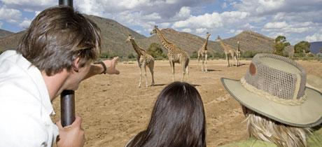 Africam Safari. Actividades con animales en Puebla