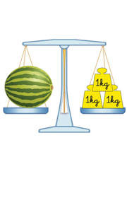 Ficha de medidas para ni os el kilogramo for Cuanto peso aguanta un cuelga facil
