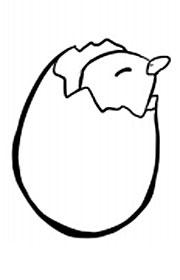 Actividades Escolares De Animales Del Huevo Al Pollito
